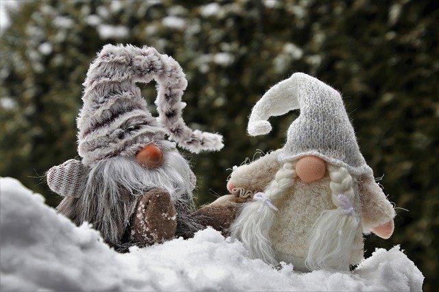 zimní trpaslíci